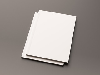 Blank magazine on a gray background. 3D illustration