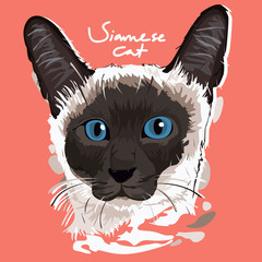 Siamese Cat Painting Poster