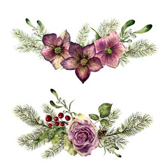 Watercolor winter floral elements with fir isolated on white background. Vintage style set with christmas tree branches, rose, holly, mistletoe, hellebore flower, leaves. Flower hand painted design