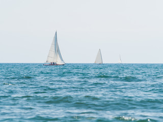 group of three small sailboats sailing in a sunny day