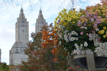 Central Park in the autumn, Manhattan, New York City, USA.