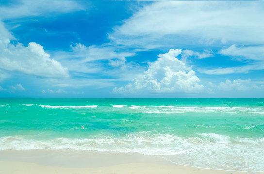 Miami tropical beach and ocean