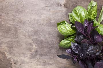 Purple and green basil