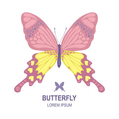 Vector butterfly logo template, vector butterfly icon