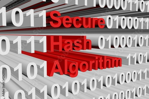 Secure Hash Algorithm in the form of binary code, 3D