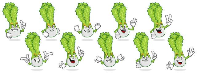 Vector pack of lettuce mascot, vector set of lettuce character, lettuce cartoon vector