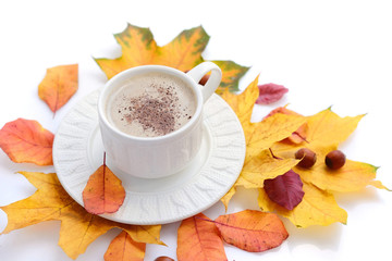 Coffee cup on the autumn fall leaves and white background