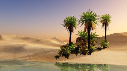 Oasis in the desert sand. Palm trees and a lake.