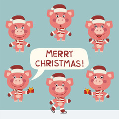 Merry Christmas! Vector set funny pig for Christmas decoration. Collection isolated christmas pig.