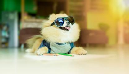 Dog artist.Dog pomeranian spitz wearing glasses But with the lov