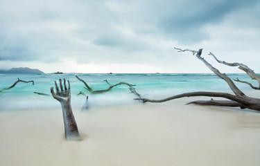 Strand in der Endzeit