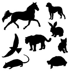 Collection of various animal silhouettes in vector format.