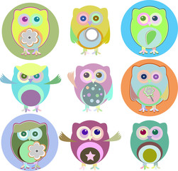 colorful owls with nine color combinations isolated on white