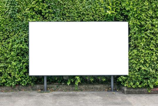 White billboard on spring summer green leaves