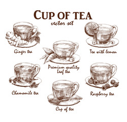 Hand drawn collection of cups of tea in vintage style. Vector illustration