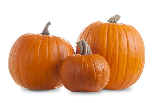 Three Pumpkins Isolated on White Background with Shadow