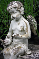 little angel sculpture decorate in small garden