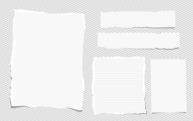 Pieces of white torn note, notebook paper sheets stuck on grey background
