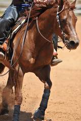 The front view of a rider in cowboy chaps and boots on a horseback running ahead and stopping the horse in the dust.