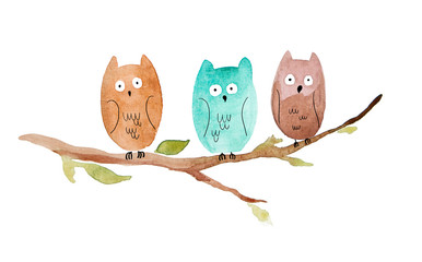three owls sitting on a branch