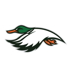 Flying duck mascot