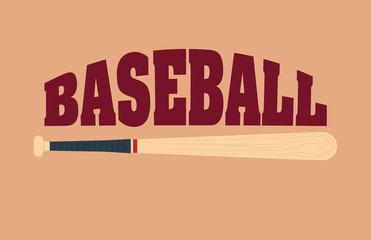 baseball sport bat icon vector illustration graphic design