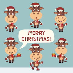 Merry Christmas! Vector set funny cow for Christmas decoration. Collection isolated christmas cow.