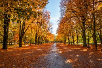 Canvas Prints Autumn Kurpark Bad Homburg