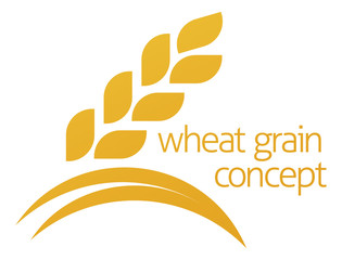 Wheat Corn Grain Icon Concept
