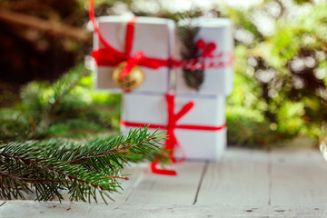 Branch of fir on a background  Christmas .Festive holiday decoration