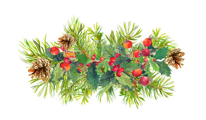 Winter flowers, fir tree, christmas mistletoe. Watercolor