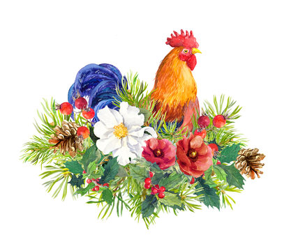 Rooster bird cock , winter flowers, christmas tree, mistletoe. Watercolor for greeting card, label, new year design