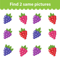 Children's educational game. Find two same pictures. Set of raspberry, blackberry, for the game find two same pictures. Vector illustration.