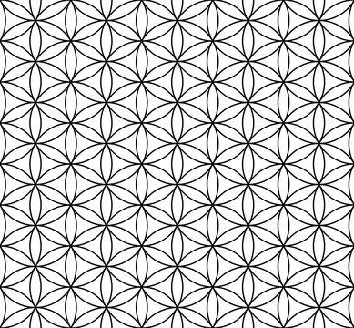 Flower of life seamless pattern, vector illustration