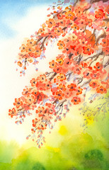 Flowering branches. Watercolour background