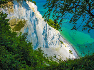 Wall Mural - Top of the white cliffs of Mons Klint in Denmark