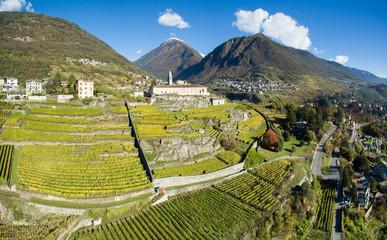 Vigneti e terrazzamenti in Valtellina - Vista aerea su coltivazioni in autunno - Aerial view 4k