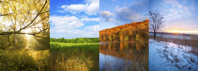 4 seasons - spring, summer, fall, winter
