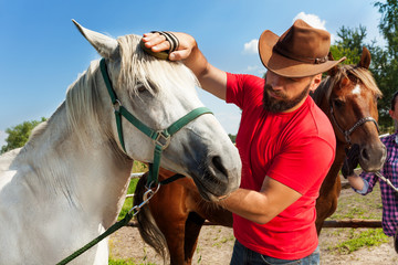 Man in cowboy hat grooming the mane of his horse
