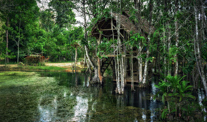 Old dilapidated shack on stilts in the jungle