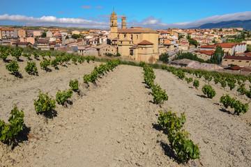 Wall Mural - Viñedo con el pueblo de Páganos, Rioja Alavesa (España)