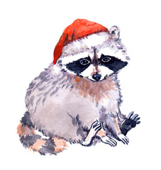 Cute raccoon animal in red santa's hat. Christmas Watercolor