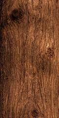 Cedar trunk bark.