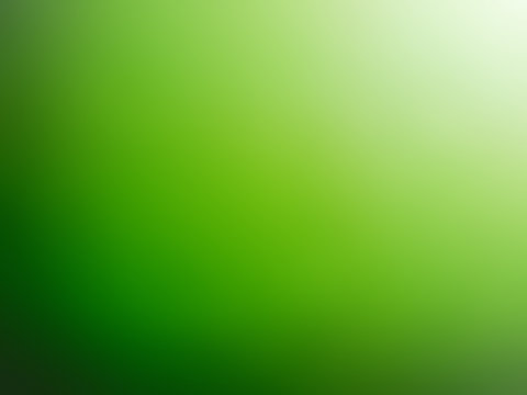 Abstract gradient green white colored blurred background