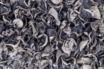 Dried chinese black fungus for food ingredient background