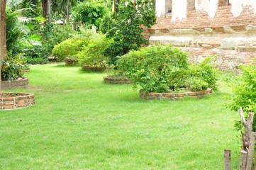 Green yard and walk way be side Buddha Church