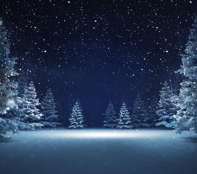 free area in winter snowy woods