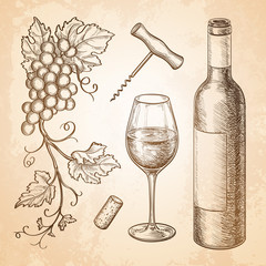 Vector illustration of wine
