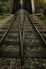 Train tracks and covered bridge