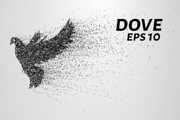The dove of the particles. Dove consists of small circles and dots.